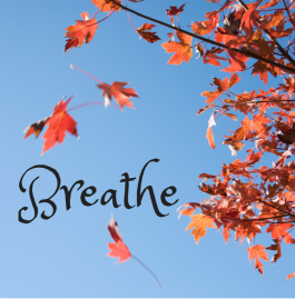 Breathe on Purpose